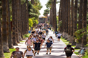 Many students walking down Palm Walk